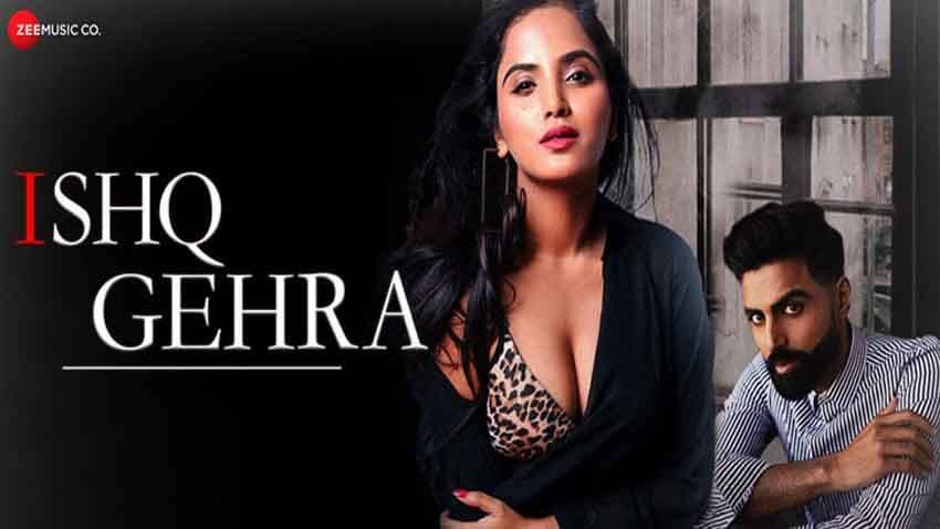 Ishq Gehra Lyrics In Hindi (2020) - Altaaf Sayyed