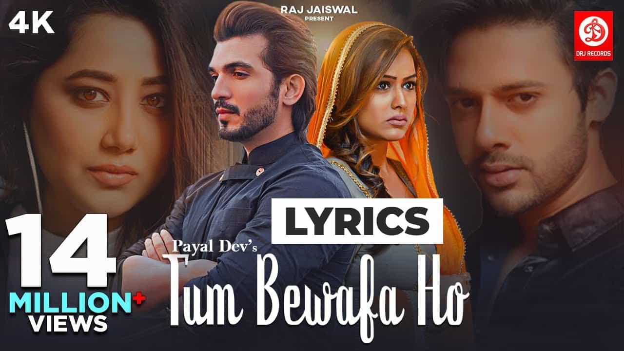 तुम बेवफा हो Tum Bewafa Ho Lyrics in Hindi (2021) – Payal & Stebin